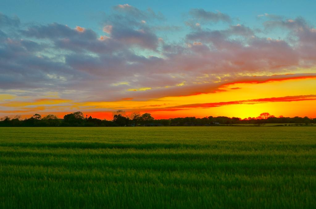 Sunset over Knightley Farm (Courtesy of SP Jones)